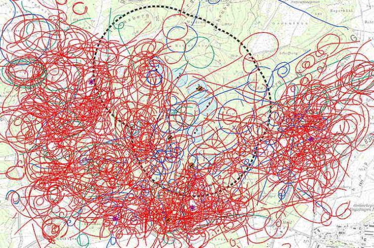 Flugbewegungen windkraftsensibler Vogelarten